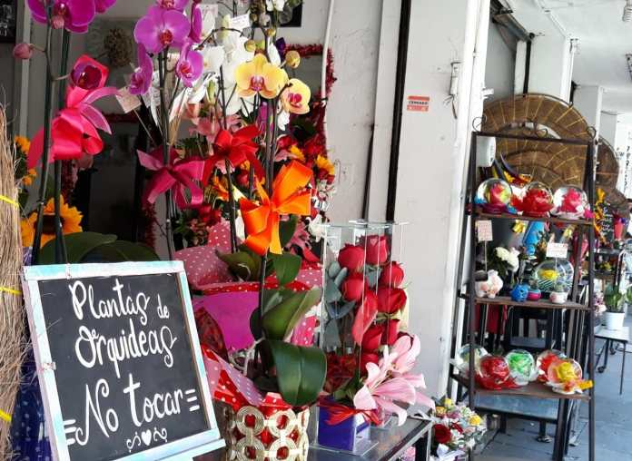 Rosas se encarecen hasta 100% para Día del Amor y la Amistad WhatsApp Image 2020 02 10 at 4.56.32 PM