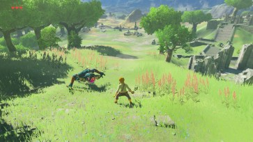 Zelda Breath of the Wild DLC 1 06