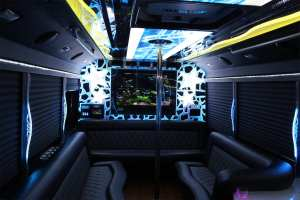 Limo Bus Luggage Space