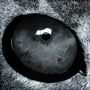 Lioneye baja