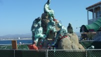 New Statue in Monterey Bay not quite unveiled!