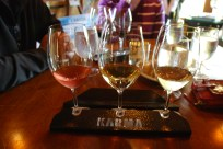 Wining it at Karma Vineyards