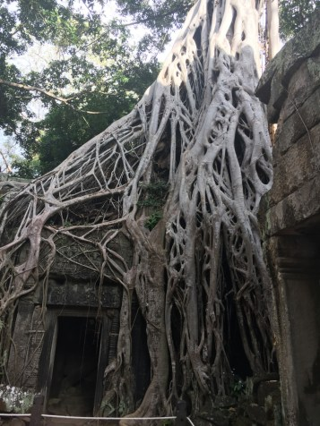 Intrecci - Amgkor Wat
