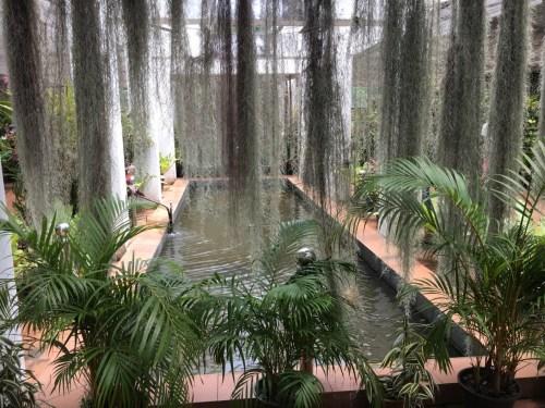 Il giardino botanico di Peradeniya