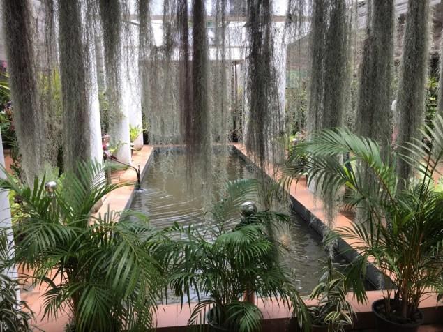 Giardino botanico - Sri Lanka