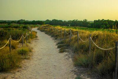 Camino Salinas Torrevieja- Fotografia atardecer - Fotografo de paisajes