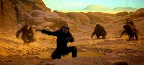 Scimmie_2001_odissea_nello_spazio
