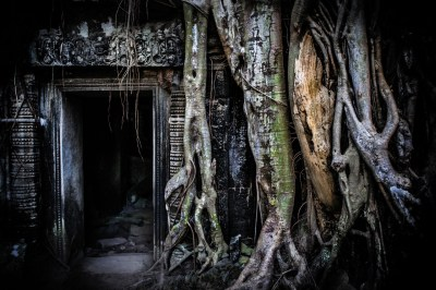 -ANGKOR part 1 ROOTS-12