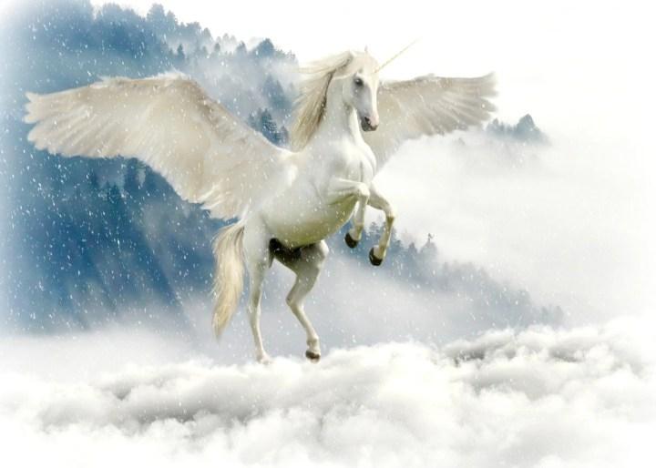 pensieri felici - i messaggi degli unicorni