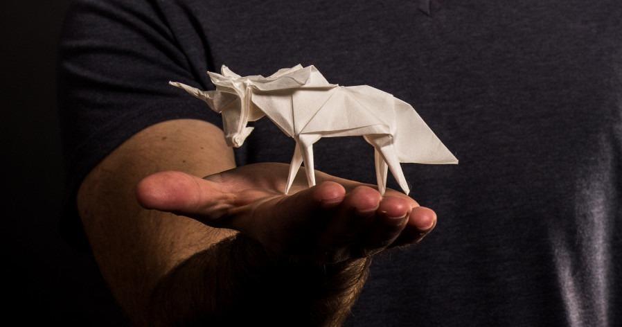 WhiteOnRice_Origami