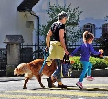 Passeggiare con i cani al guinzaglio. Nonna e nipote con Golden Retriever