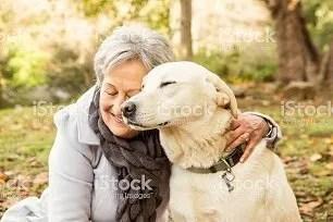 I cani anziani a volte necessitano di prodotti di integrazione minerale o vitaminica