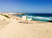 surf-beach-fuerteventura-ales-consulting-international