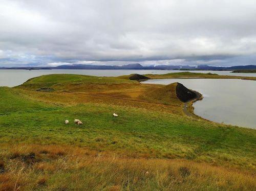 Pseudo cráteres de Skútustaðir
