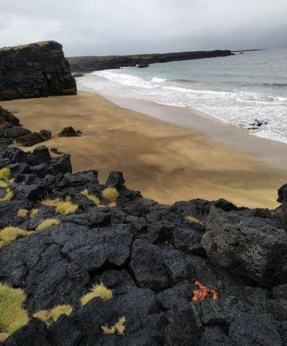 Playa de Skarðsvík