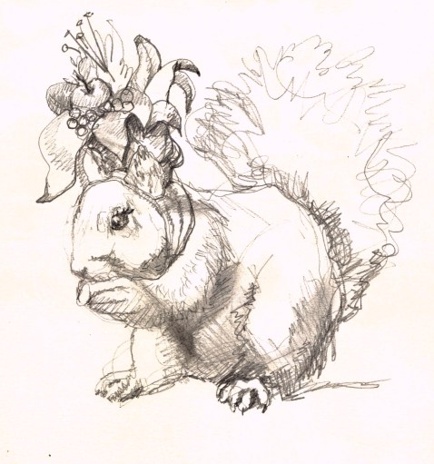 drawing for tropical squirrel