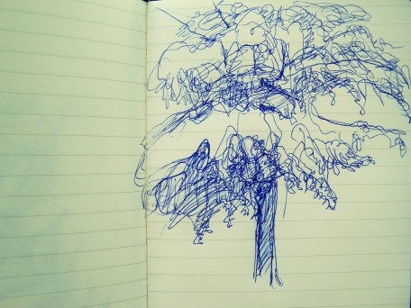 tree sketch in pen
