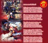 Alevi Bektaşi Kızılbaş Pir Sultan Devrimci Aleviler Birliği DAB kanlar dokuldu kan fezali