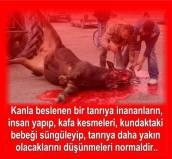 Devrimci Aleviler Birliği DAB Alevi Kızılbaş Bektaşi pir sultan cem hz Ali 12 imam semah Feramuz Şah Acar 1395294_10202312236635274_547828057_n