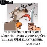 Devrimci Aleviler Birliği DAB Alevi Kızılbaş Bektaşi pir sultan cem hz Ali 12 imam semah Feramuz Şah Acar cellak dana kilic alevi