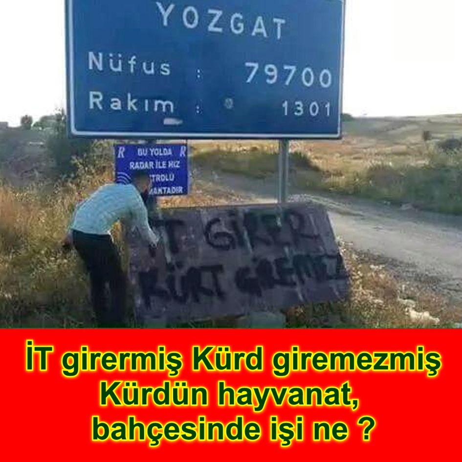Devrimci Aleviler Birliği DAB Alevi Kızılbaş Bektaşi pir sultan cem hz Ali 12 imam semah Feramuz Şah Acar it girer kurt giremez