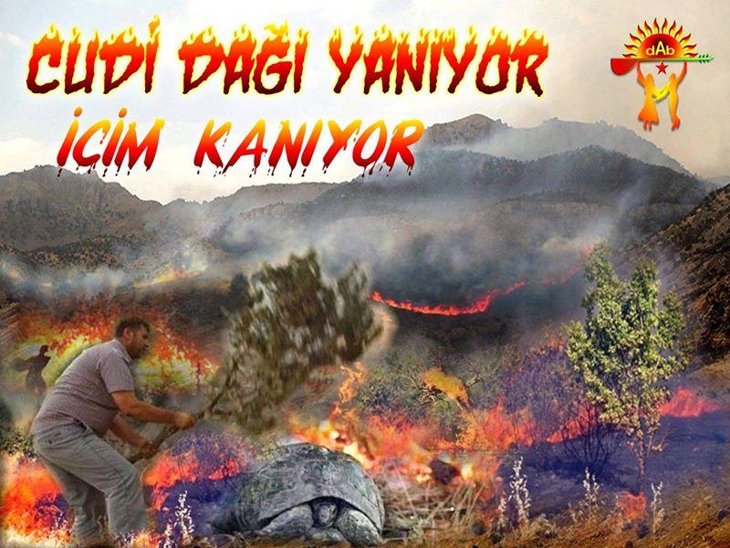 Devrimci Aleviler Birliği DAB Alevi Kızılbaş Bektaşi pir sultan cem hz Ali 12 imam semah Feramuz Şah Acar photo_543955535752840