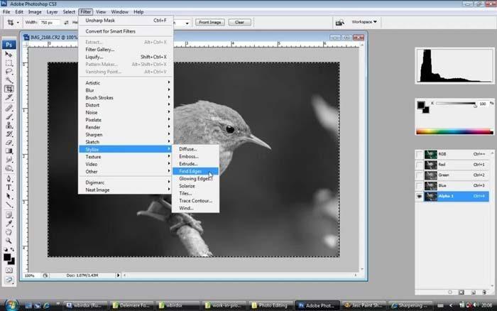 adobe-photoshop-cs3-portable-free-download-windows-6013632