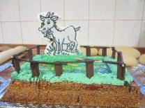 tierischer Geburtstag