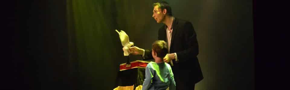 magicien colombe oiseau