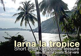 insule tropicale din thailanda