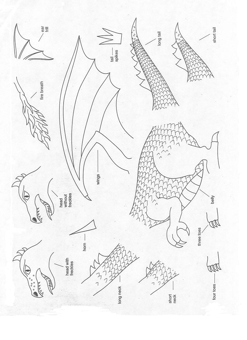 worksheet. Dragon Genetics Worksheet. Worksheet Fun