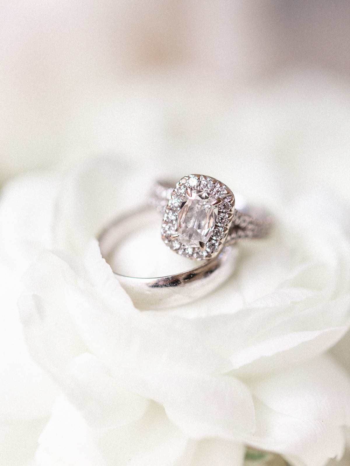 Wedding and Engagement Ring: Luxurious Knotting Hill Place Wedding