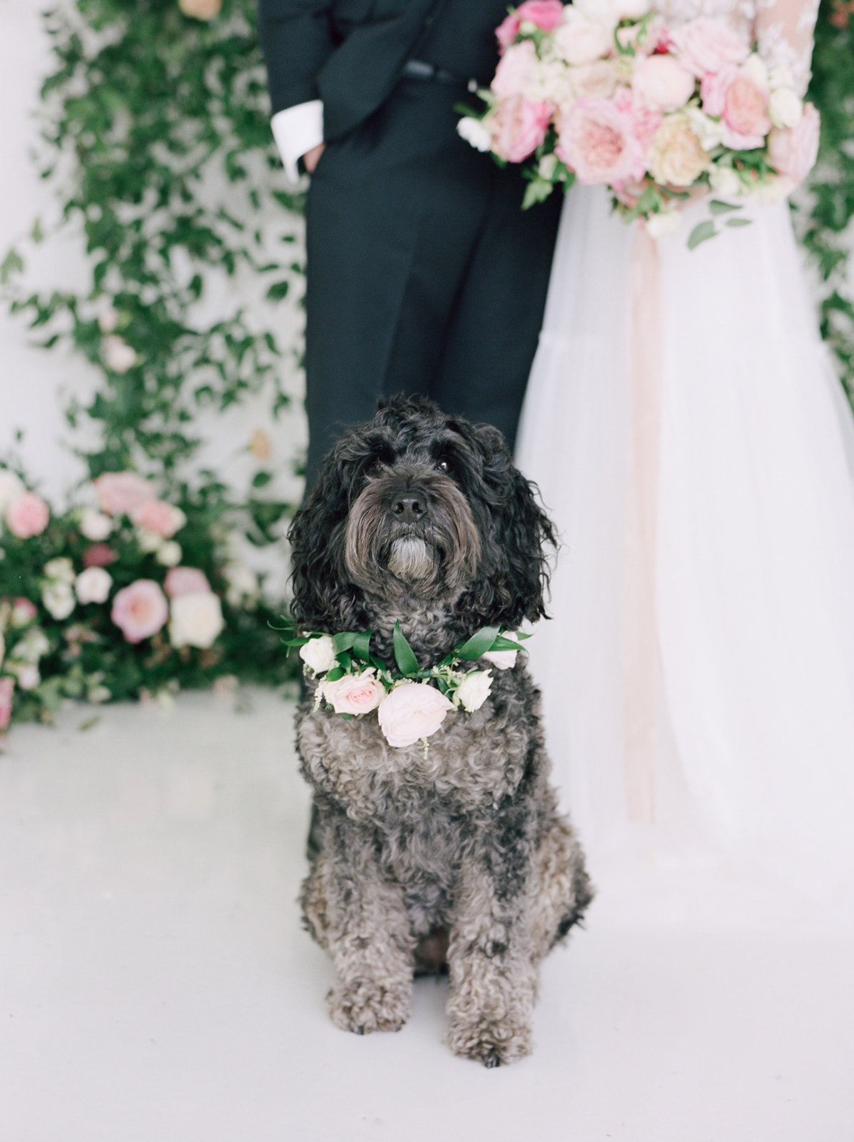 Pink floral dog wedding collar: Pink Floral Wedding Inspiration at The Lumen Room featured on Alexa Kay Events