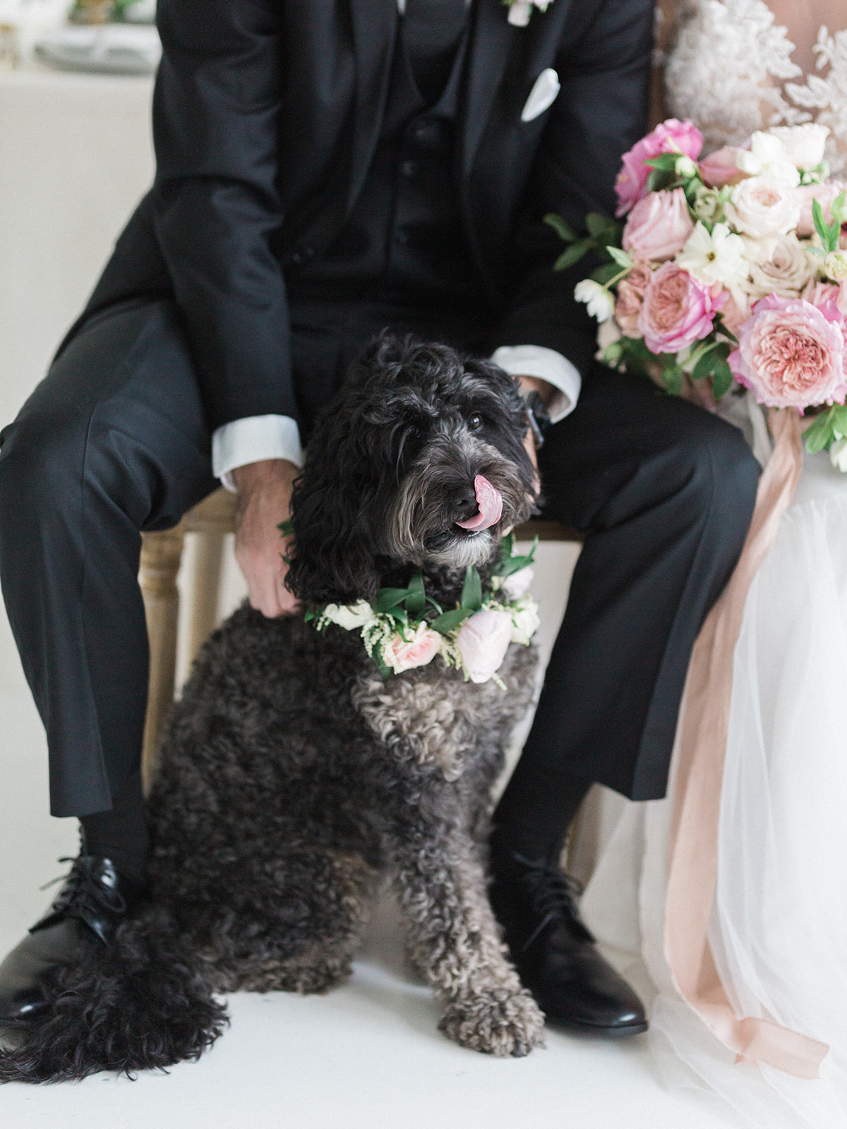 Floral dog wedding collar: Pink Floral Wedding Inspiration at The Lumen Room featured on Alexa Kay Events