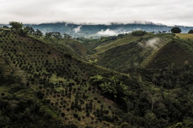Colombia_20160806_0715