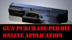 Online Pistol Purchase Permit Application.  Additional convenience fees may apply for using this service.