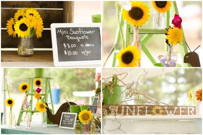 Alexandra Michelle Photography- Burnside Sunflower Farm-18