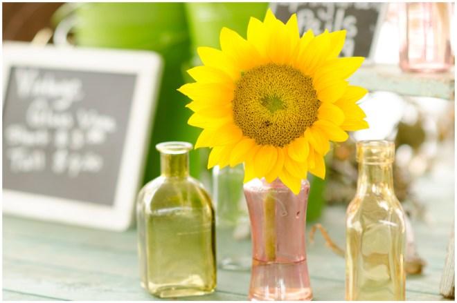 Alexandra Michelle Photography- Burnside Sunflower Farm-9