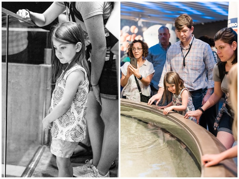 Alexandra Michelle Photography - Summer 2019 - Davidson Visit - Baltimore National Aquarium-5