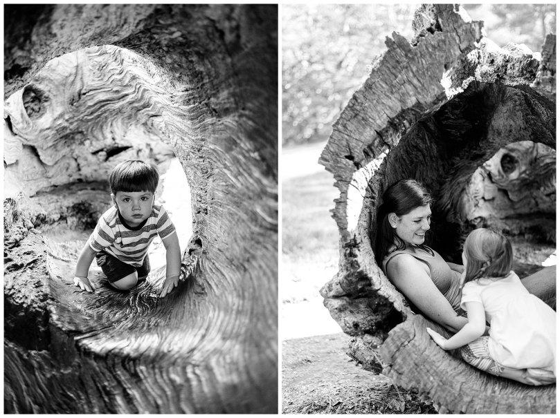 Alexandra Michelle Photography - 2019 - Charlottesville Virginia - Monticello Trail - Family Portraits - Davidson BW-45