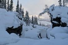 It's a winter wonderland