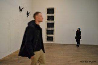 Tate 6
