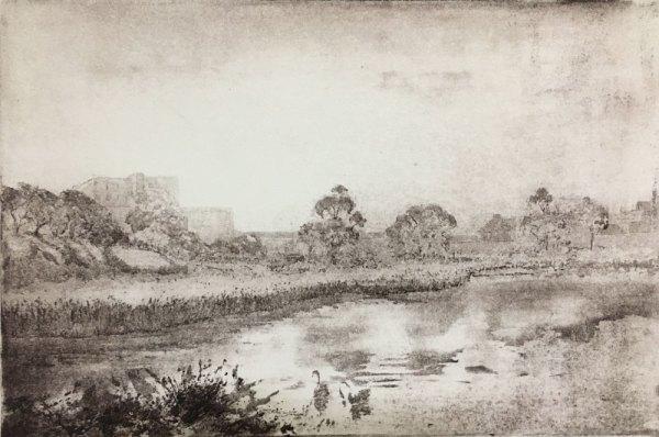 Newell's paddock by Alexandra Sasse. Etching