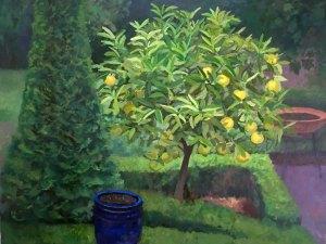 Alexandra Sasse painting Citrus tree with blue pot