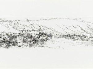 Drawing by Sallie Moffatt 'Fowlers Gap Triptych (left)'