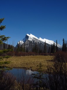 Mt. Rundle and Vermillion Lakes in Banff National Park located on Treaty 7 territory, and traditional territory of Kootenay, Stoney, Blood Peigan, Siksika, and Tsuu T'ina First Nations peoples.