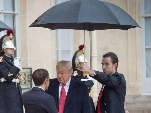 TM trump umbrella