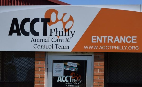 acct-philly-dog-reunion-3-e1523657794600