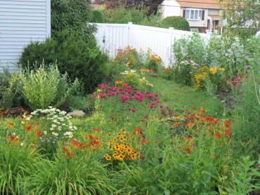 july garden77