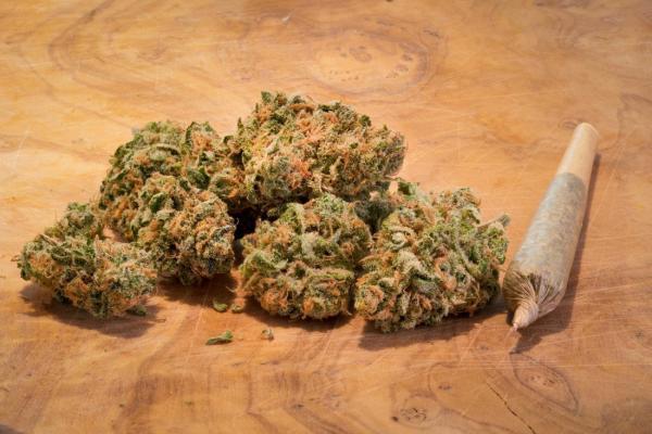 sha marijuana